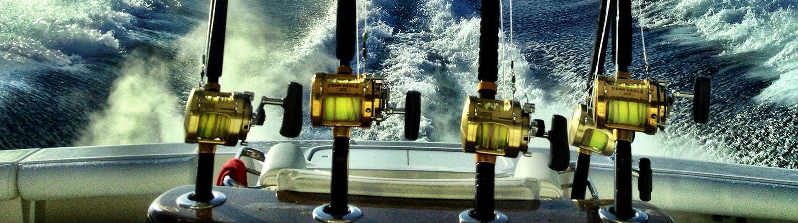 fishing charters gold coast
